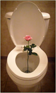 toilet with rose flower