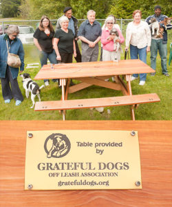 Dog Park Bench and members of Grateful Dogs Off Lease Association